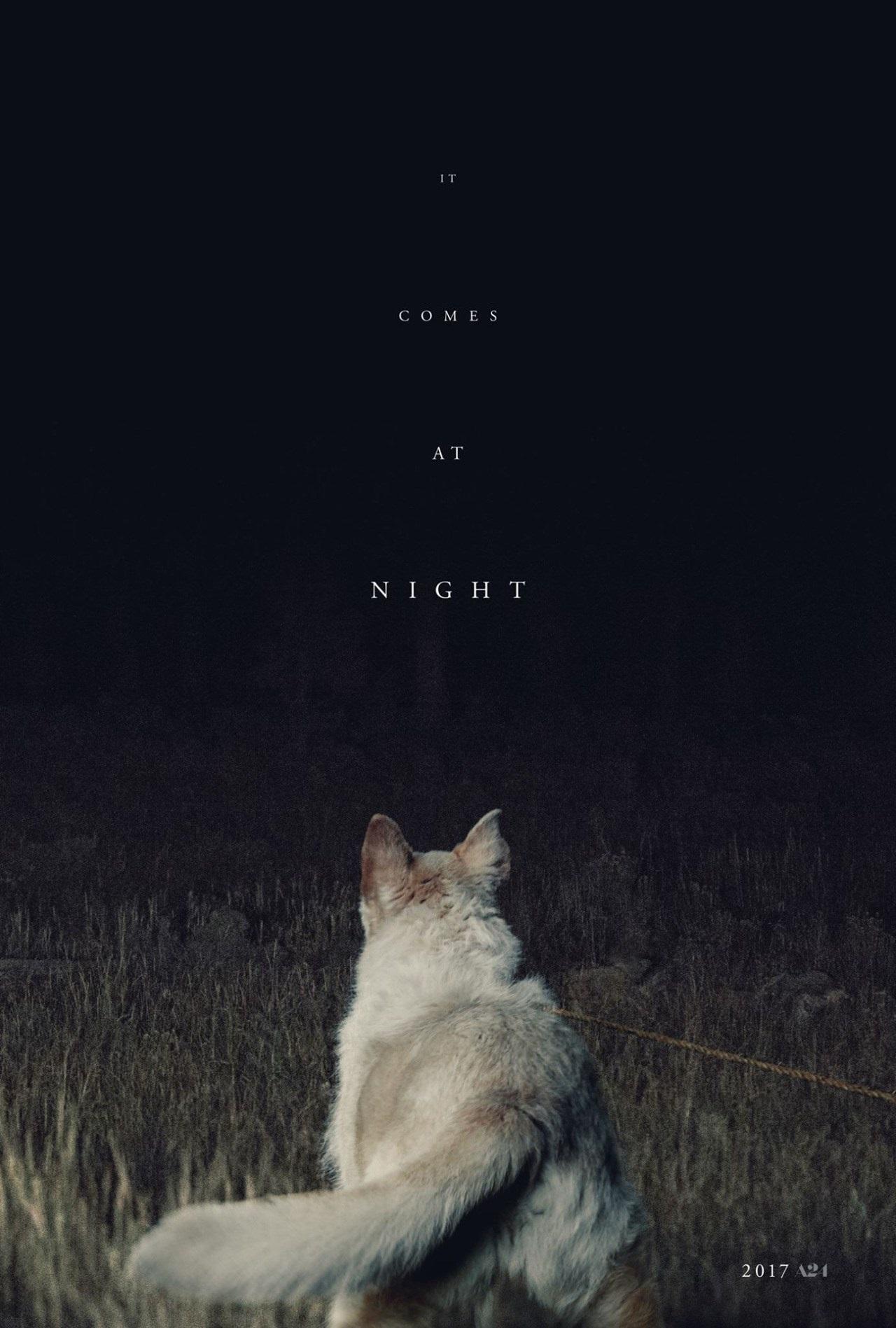 Crítica | Ao Cair da Noite