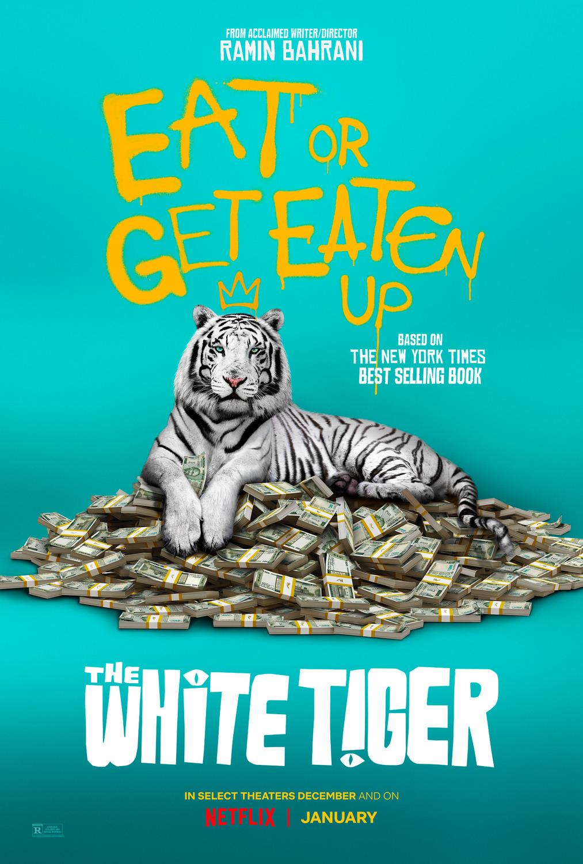Crítica | O Tigre Branco